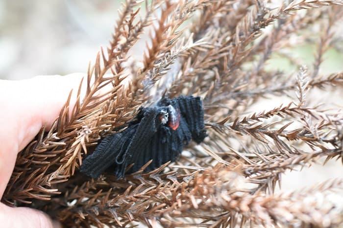 火口を枯れ葉や木くずなどで包み、息を吹きかけて燃え広がるようにする