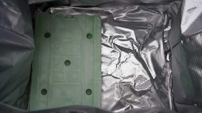 アルティメイトアイスクーラーⅡ(25L)とロゴスの倍速氷点下パックのサイズ感